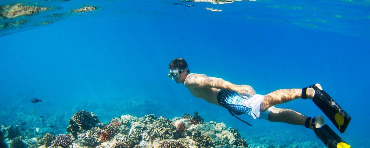 Snorkeling La Réunion